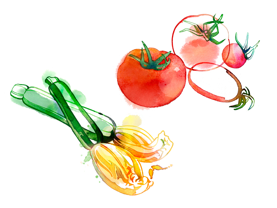 tomates-courgettes